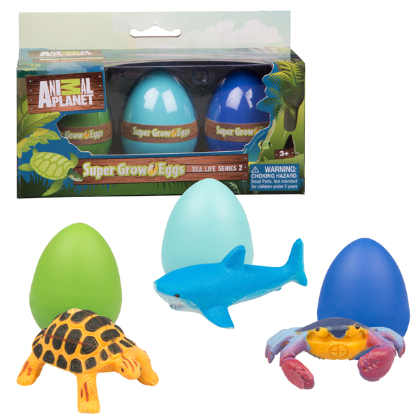 dinosaur egg hatch in water instructions